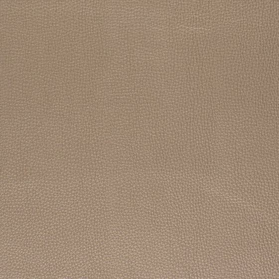 Photo of the fabric Endure FR-One Treasure swatch by FR-One. Use for Upholstery Medium Duty, Accessory. Style of Plain, Texture