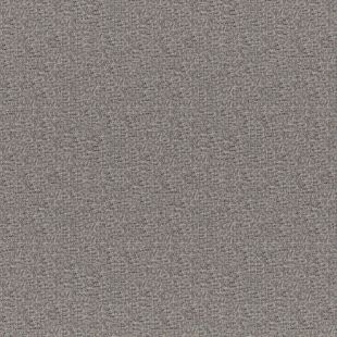 Photo of the fabric Spartacus Ash swatch by Fibreguard Pro. Use for Upholstery Medium Duty, Accessory, Top of Bed. Style of Plain, Texture